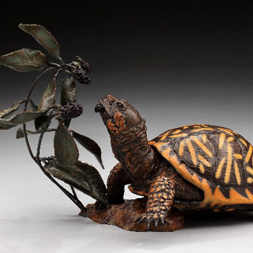 Blackberry_Bliss_Ornate_Box_Turtle_2ac