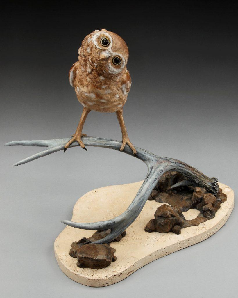 Who You? - DIane Mason - Burrowing Owl