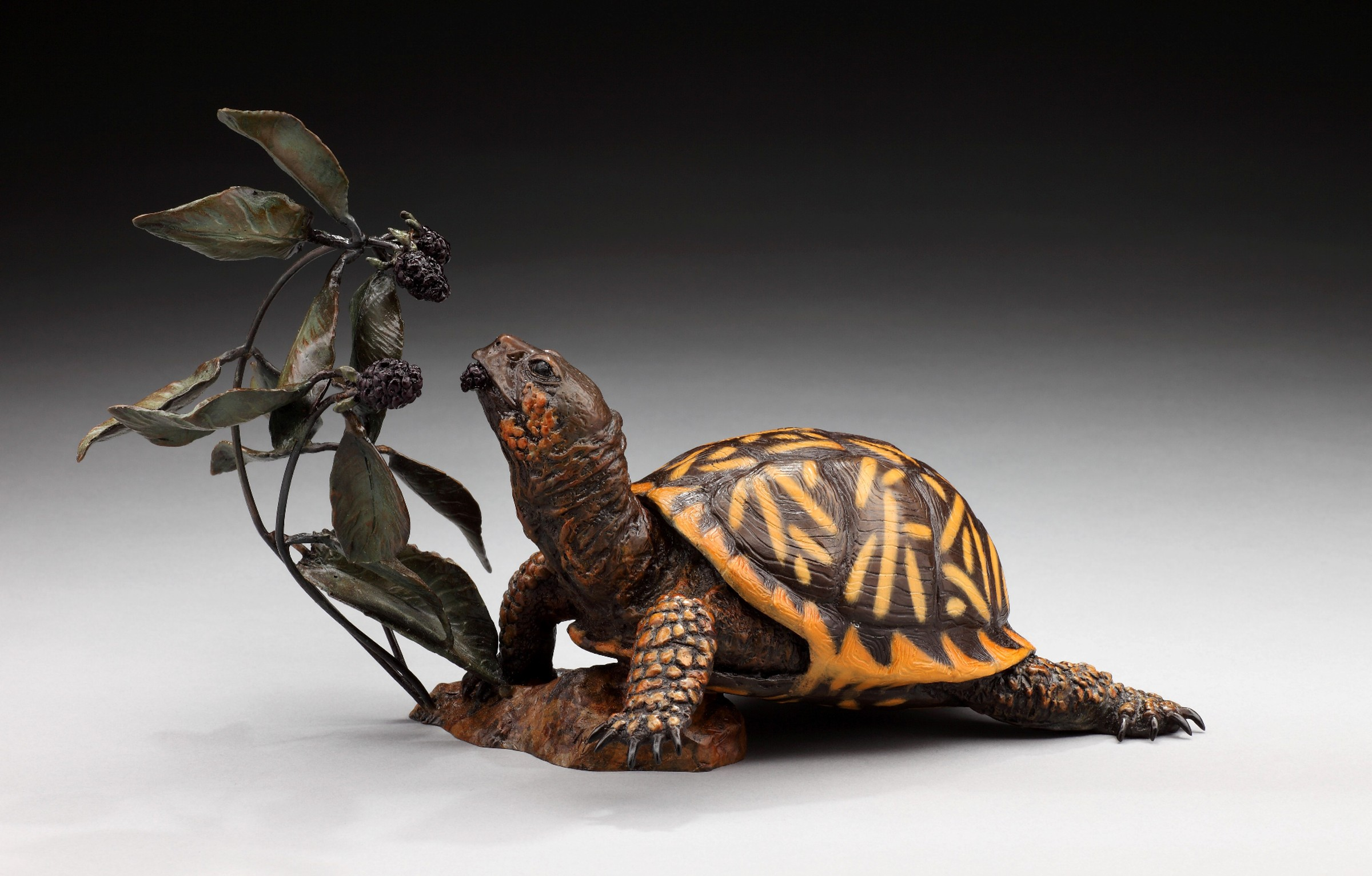 Blackbery Bliss - Diane Mason - Box Turtle
