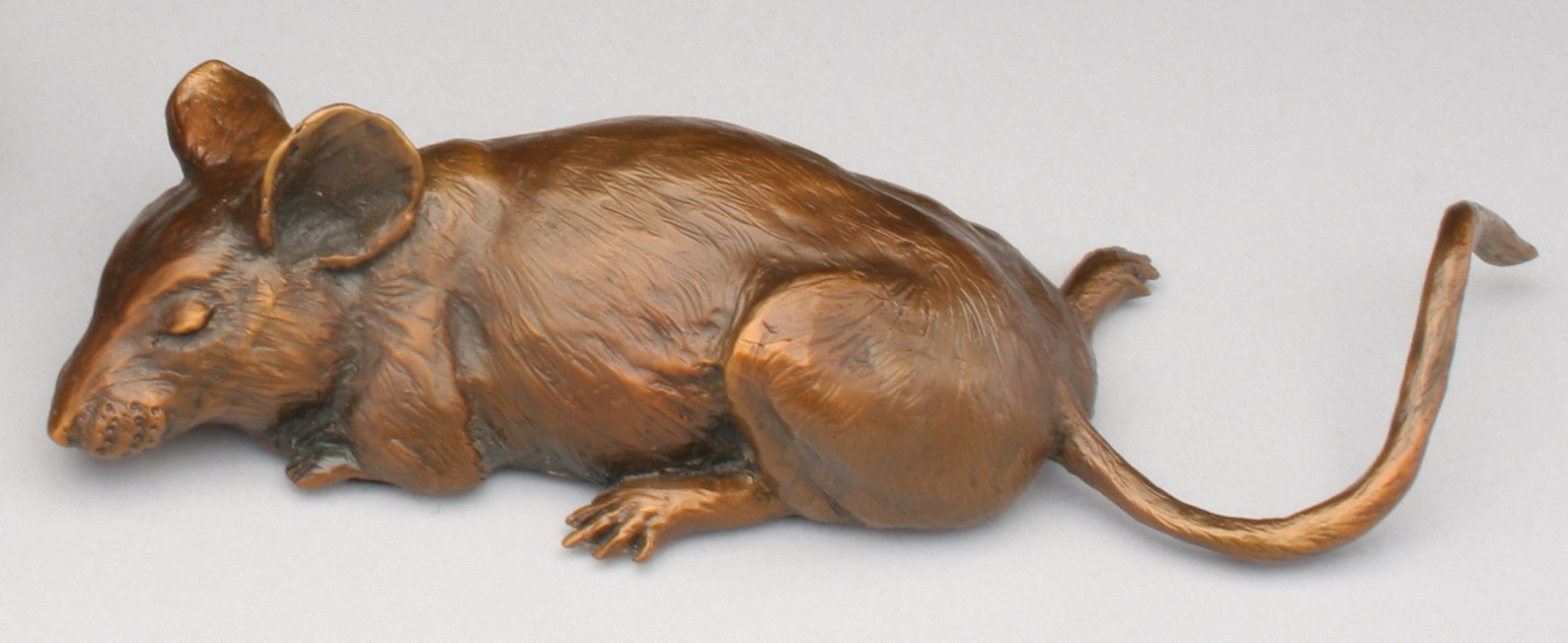 Full Tummy - Diane Mason - Sleeping Mouse