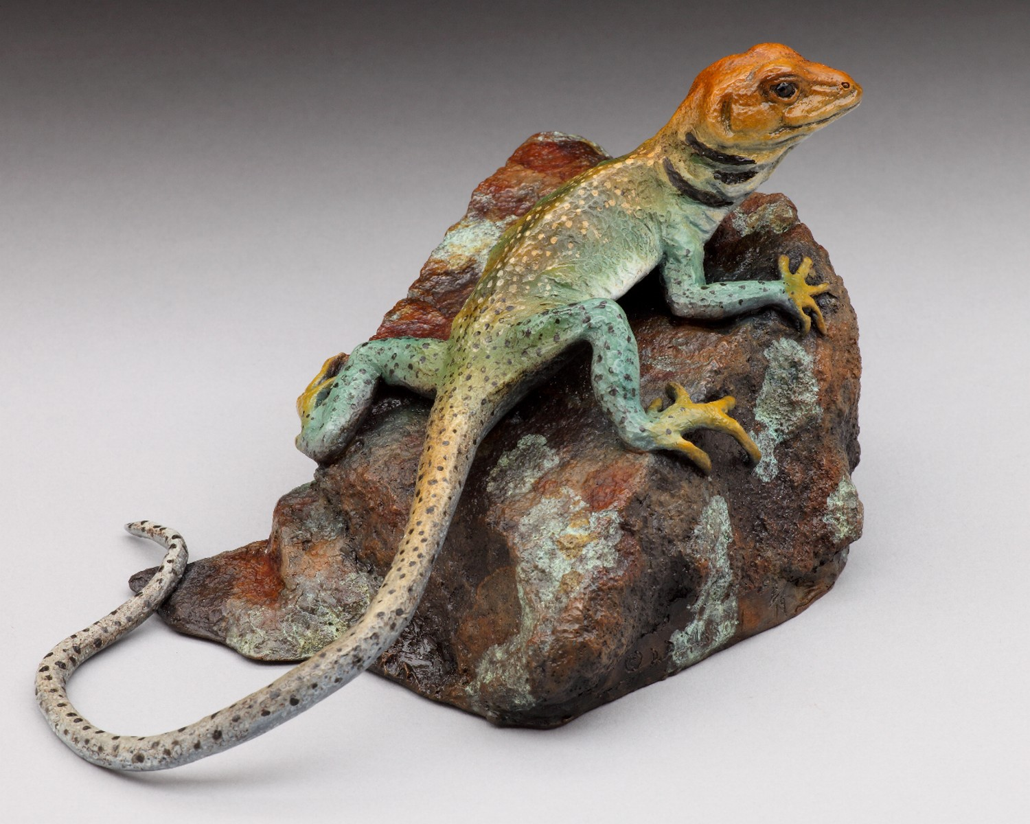 Looking For Lizzie - Diane Mason - Collared Lizard