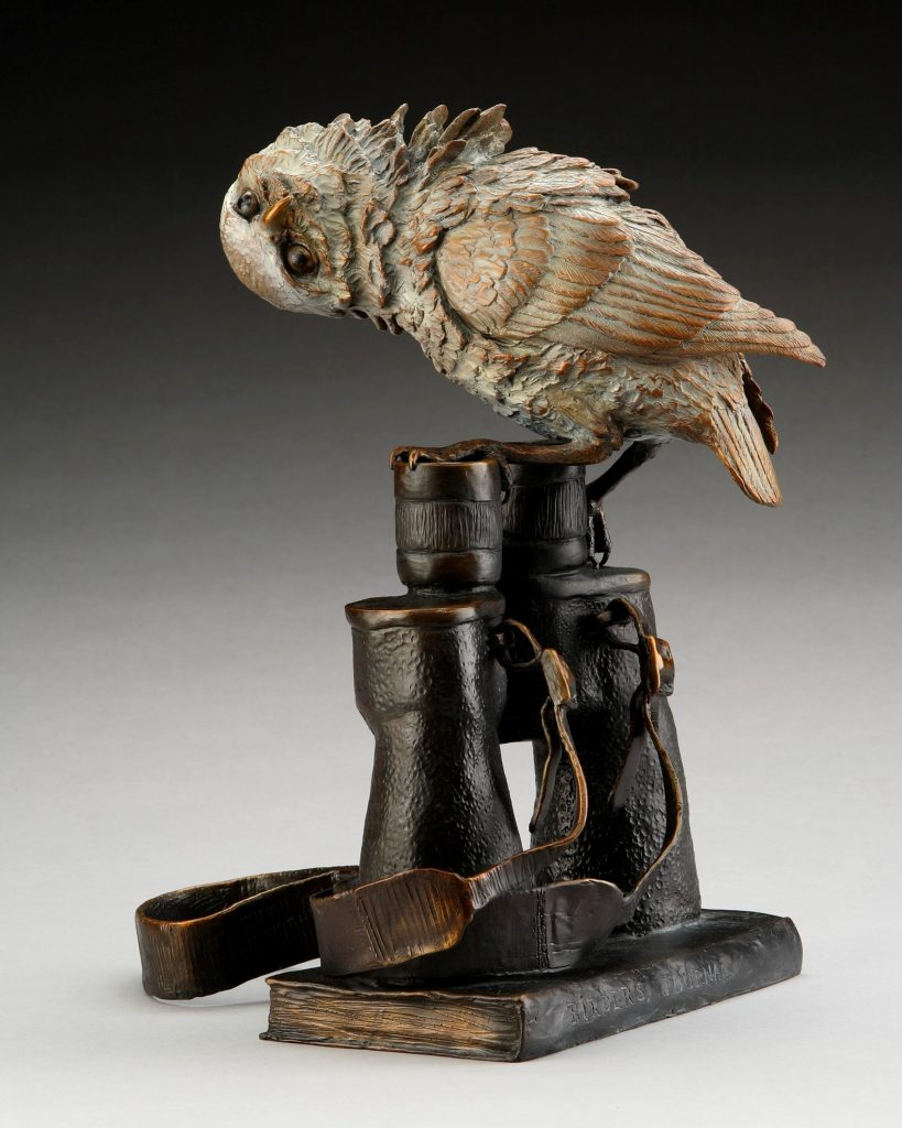 Who's Looking at Who - Diane Mason - Burrowing Owl on Binoculars