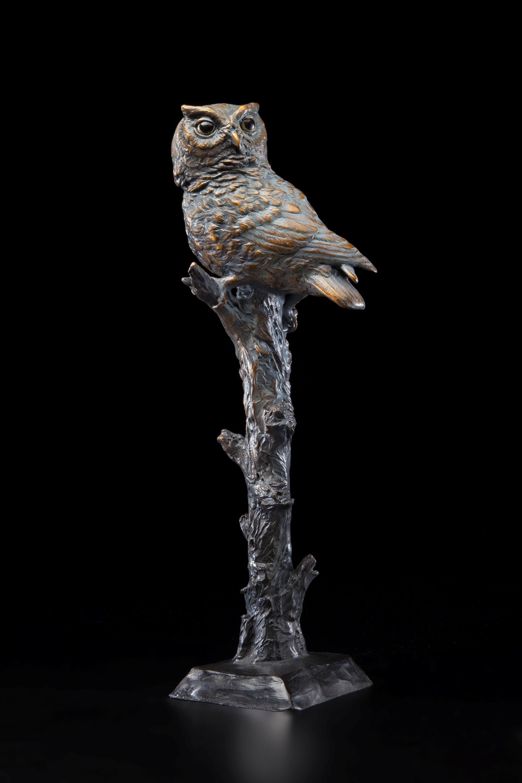 Silent Sentinal - Diane Mason - Screech Owl